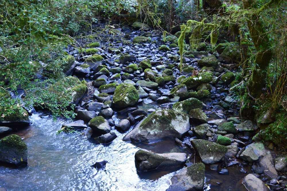 Trilha Caminho das Pedras recebe melhorias e abrirá visitação